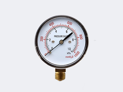 YE-60 Ordinary Type Capsule Pressure Gauge