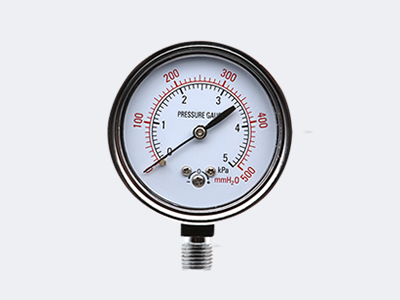 YE-60 Zero Adjustment Capsule Pressure Gauge