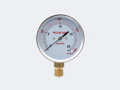 YE-75 Ordinary Type Capsule Pressure Gauge