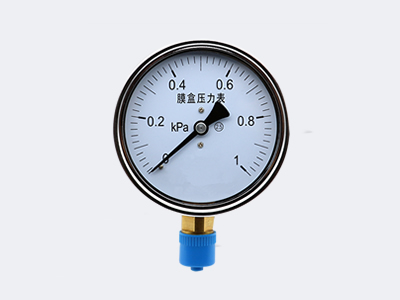 YE-100 Ordinary Type Capsule pressure gauge